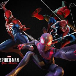 spiderman freetoedit