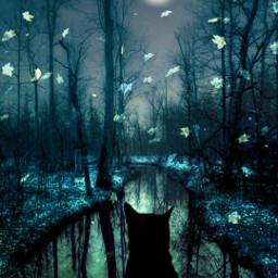 replay picsartreplay heypicsart makeawesome surreal macig dream freetoedit