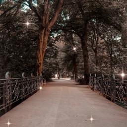 forest munich germany sparkles sparkly germanforest freetoedit