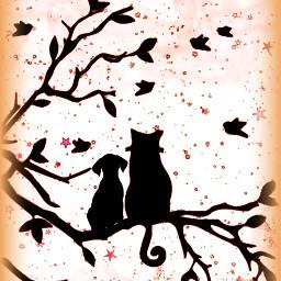friendship silhouette catsanddogs cat dog animallove freetoedit