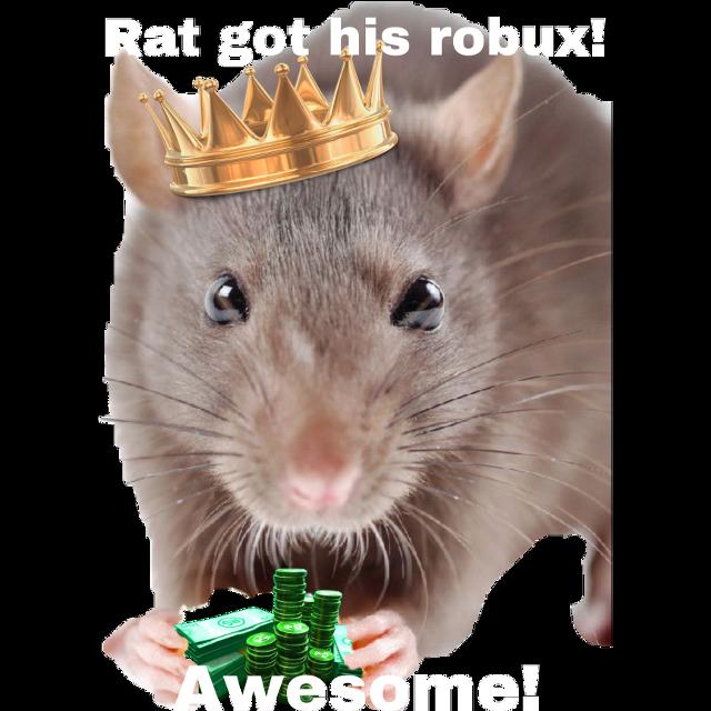 Rat got his robux #rat