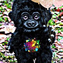 balloons happybirthday text gorilla toy petsandanimals cute freetoedit