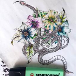 snake draw drawing freetoedit
