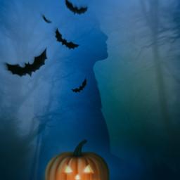pumpkin halloween 31october bats freetoedit unsplash