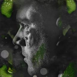 man face greenleaf abstractart freetoedit