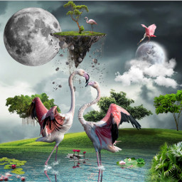 freetoedit flamingo moon clouds lake birdpink flying tree grass flowers island sureeal imagination animals