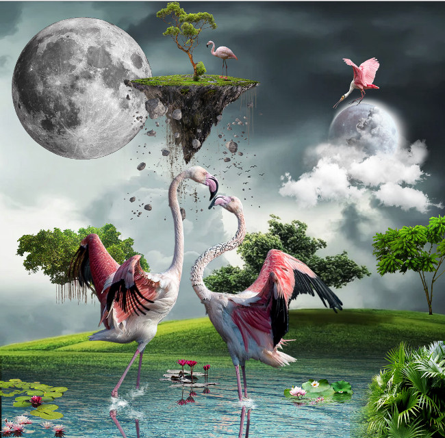 #freetoedit #flamingo #moon #clouds #lake #birdpink #flying #tree #grass #flowers #island #sureeal #imagination #animals