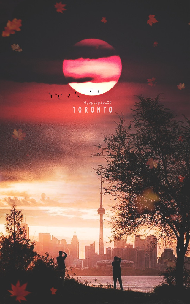 Autumn evening in Toronto 🌃🍁🇨🇦 #picsart #myedit #myremix #replay #picsartreplay #picsart #autumn #canada #toronto #autumnleaves #autumncolors #evening #moon #unsplash @picsartpartnerships @freetoedit @picsart