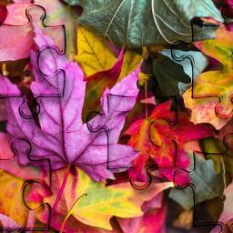 unsplash autumnal srcpuzzlepieces puzzlepieces freetoedit