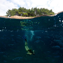 sea diving summer freetoedit