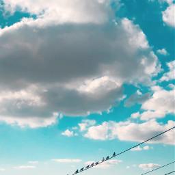 freetoedit sky clouds sunny