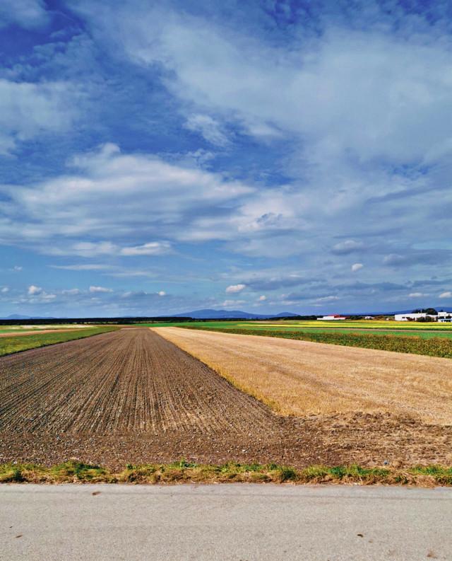#landscape #fields #bluesky #nature