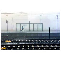 leiden foggymorning trainstation streetphotography