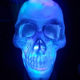 freetoedit halloween skull glowinthedark boo