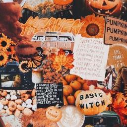 wallpaper fallwallpaper autumnwallpaper fallaesthetic autumnaesthetic fall autumn aesthetic sticker