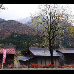 freetoedit japan banners architecture mountains nature autumn japanesesigns roads housings roofs trees