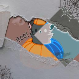 fall halloween cat pumpkin blue spiderwebs cute forthegold trend cats youareeverything paper paperrip kawaii rcrippedpaperaesthetic rippedpaperaesthetic freetoedit