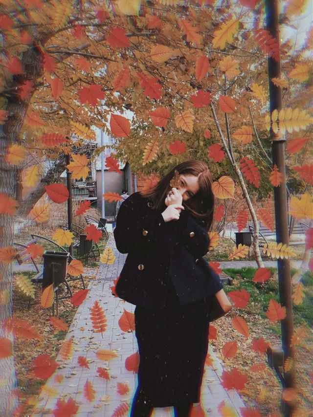 #autumn #leaves #autumnleaves🍁🍁🍁 #autumnleaves #fall #fallingleaves