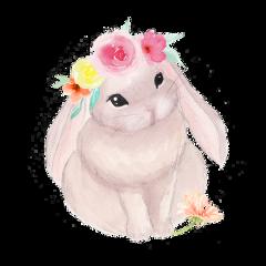 rabbit cute pretty flowers freetoedit