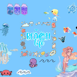 summer sea ocean beach mare estate oceano oceanside whale balena fish seacreatures wallpaper wallpaperedit blueaesthetic seaaesthetic oceanaesthetic aquarium water eczoombackgroundsvibes zoombackgroundsvibes freetoedit