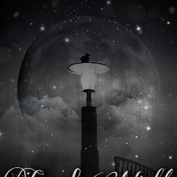 goodnight night moon black bird nighttime nighttimesky sleep freetoedit