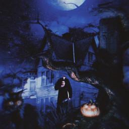 happyhalloween halloween freetoedit unsplash