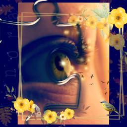 kinora eye bird birdsflying freetoedit srcpuzzlepieces puzzlepieces