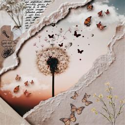 preety wish wishmaker butterfly cozy rip ripped rippedpaper flowers freetoedit rcrippedpaperaesthetic rippedpaperaesthetic