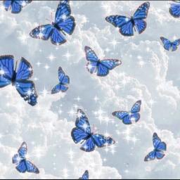 butterfly blue bluelight mariposa nube nubes fondo wallpapaer aesthetic tmbler vsco freetoedit