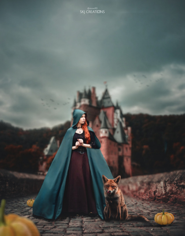 #freetoedit #picsart #madewithpicsart #girl #fox #halloween #castle