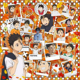 anime manga otaku japan weeb haikyuu hq volleyball haikyu nishinoya yuu yuunishinoya nishinoyayuu orange aesthetic karasuno freetoedit srcautumnleaves autumnleaves