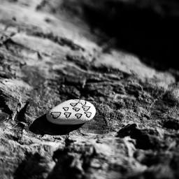 friendship rock rockheart hearts photography 50mmf18 sonya7iii blackandwhite
