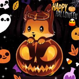 cute puppy halloweenpuppy haloweenwallpaper puppywallpaper freetoedit