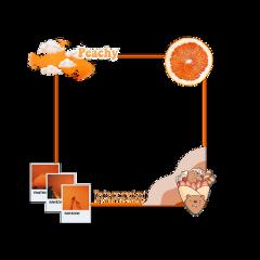 freetoedit aestetic aestethicframe orangeasthetic orange orangeframe oranges aestethic oren frameoren stikeraesthetic