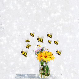 birthday srcbethequeenbee bethequeenbee freetoedit
