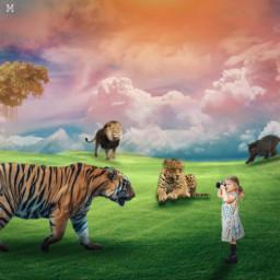 jungle selva tiger lion panther jaguar lepard girl madewithpicsart edited photoshoot