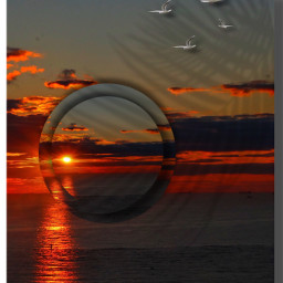 sunset sun surreal sea ocean seagull sky clouds madewithpicsart weather creative myedit mystyle myart freetoedit