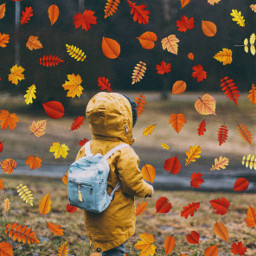 autumnleaves autumncolors autumnvibes children childhood freetoedit unsplash srcautumnleaves