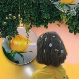 freetoedit flower aesthetic yellow yellowaesthetic srcbethequeenbee