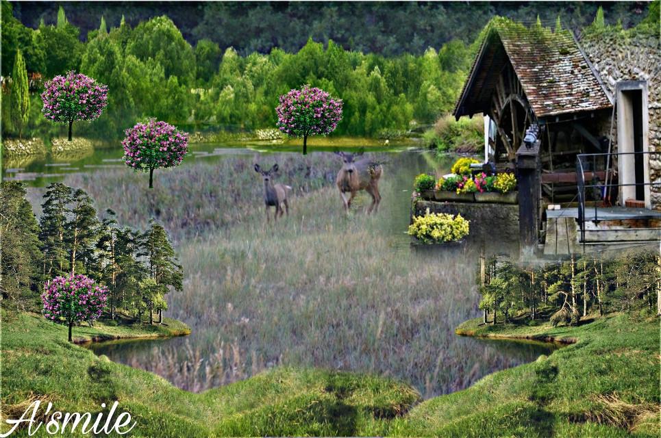 #@asweetsmile1 #deer #blendedimages #blend #creative #creativeart #background #remix #challenge