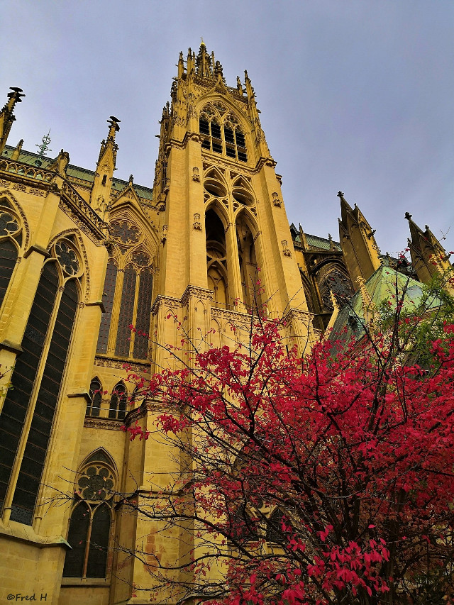 Metz with autumn's colours. 😃 Enjoy your day 🤗🍂☘️🍁🌿☀️ #monuments #cathedrals #cathedral #autumn #autumncolors #myphoto #follow4follow