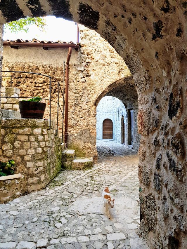 Borgo antico #borgo #cat #vicolo #myphoto #Abruzzo #italia #