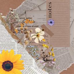 vintage asthetic brown paper ripped srcvintageaesthetic freetoedit