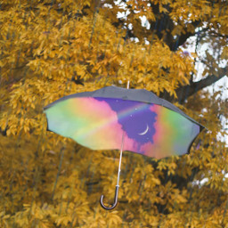 umberella freetoedit ircundertheumbrella undertheumbrella