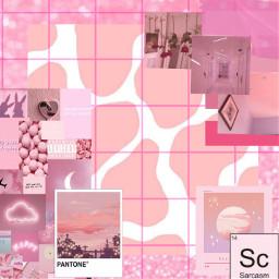rosa rosa💗 pink pinkaesthetic fondo luvi tmblr freetoedit