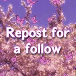followmeplz repostforafollow freetoedit