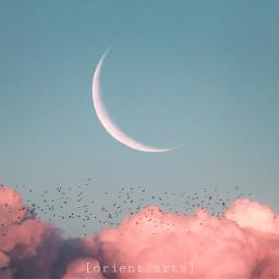 cloud clouds sky moon birds freetoedit