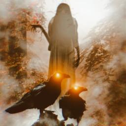 ravens ghost halloween freetoedit