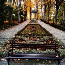 autumn autumnvibes fall park autumncolors bench myphoto myclick heypicsart freetoedit