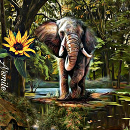 @asweetsmile1 background blendedimages sunset plumtree elephant forest beautiful freetoedit